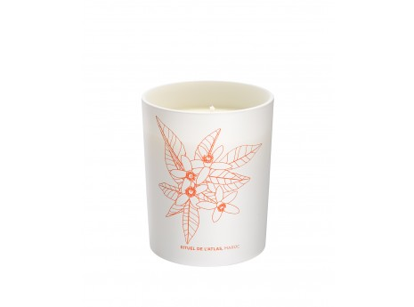 bougie-aromatique-atlas
